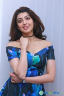 Pranitha New Photos (2)
