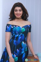 Pranitha New Photos (4)