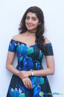 Pranitha New Photos (6)