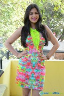 Prasanna at Inkenti Nuvve Cheppu Press Meet (21)