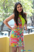 Prasanna at Inkenti Nuvve Cheppu Press Meet (9)
