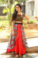 Priyanka Pallavi at Nenostha Release Press Meet (30)