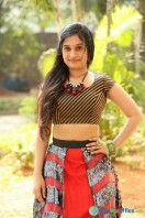 Priyanka Pallavi at Nenostha Release Press Meet (31)