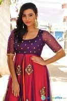 Priyanka Ramana at Pochampally IKAT Art Mela Launch (5)