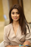 Shriya Saran Latest Photos (10)