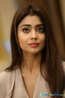 Shriya Saran Latest Photos (17)