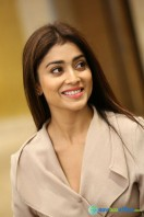 Shriya Saran Latest Photos (19)