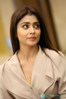 Shriya Saran Latest Photos (22)