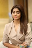 Shriya Saran Latest Photos (3)