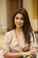 Shriya Saran Latest Photos (7)