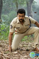 Si3 Latest Gallery (17)