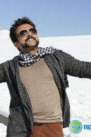 Si3 Latest Gallery (27)