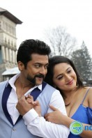 Si3 Latest Gallery (33)
