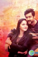 Si3 Latest Gallery (5)
