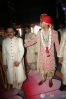 T Subbarami Reddy Grandson Keshav Wedding (66)