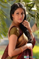 Lavanya Tripathi Stills in Sokkali Mainar (6)