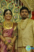 Vagai Chandrasekhar Daughter Wedding (16)