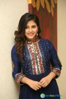 Anjali at Chitrangada Pre Release Function (12)