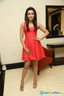 Catherine Tresa At Intex Air Conditioners Launch (1)