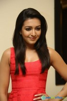 Catherine Tresa At Intex Air Conditioners Launch (11)