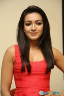 Catherine Tresa At Intex Air Conditioners Launch (12)