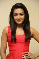 Catherine Tresa At Intex Air Conditioners Launch (13)