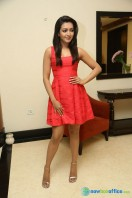 Catherine Tresa At Intex Air Conditioners Launch (2)