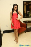 Catherine Tresa At Intex Air Conditioners Launch (3)