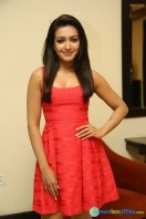 Catherine Tresa At Intex Air Conditioners Launch (5)