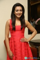 Catherine Tresa At Intex Air Conditioners Launch (8)