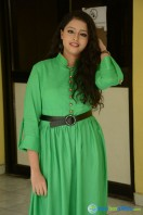 Geethanjali at Mixture Potlam Audio Success Meet (12)