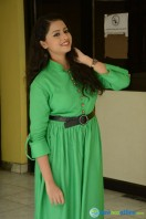 Geethanjali at Mixture Potlam Audio Success Meet (13)