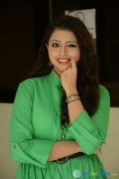 Geethanjali at Mixture Potlam Audio Success Meet (17)