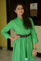 Geethanjali at Mixture Potlam Audio Success Meet (18)