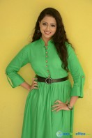 Geethanjali at Mixture Potlam Audio Success Meet (27)