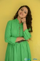Geethanjali at Mixture Potlam Audio Success Meet (28)