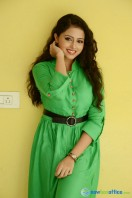 Geethanjali at Mixture Potlam Audio Success Meet (29)