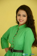 Geethanjali at Mixture Potlam Audio Success Meet (33)