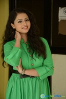 Geethanjali at Mixture Potlam Audio Success Meet (8)