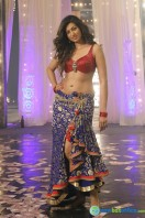 Hamsa Nandini Stills in Kittu Unnadu Jagratha (6)