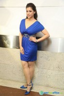 Mannara Chopra at Rogue Teaser Launch (15)