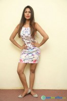 Nishi Ganda at Tick Tack Press Meet (1)