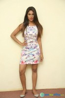 Nishi Ganda at Tick Tack Press Meet (10)