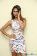 Nishi Ganda at Tick Tack Press Meet (17)
