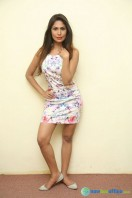 Nishi Ganda at Tick Tack Press Meet (2)