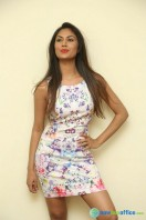 Nishi Ganda at Tick Tack Press Meet (27)