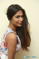 Nishi Ganda at Tick Tack Press Meet (37)