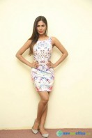 Nishi Ganda at Tick Tack Press Meet (7)