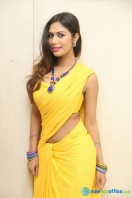 Nishi Ganda at Tik Talk Motion Poster Launch (16)
