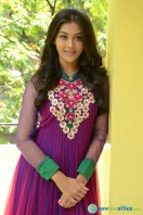 Pooja at Dwaraka Success Meet (24)